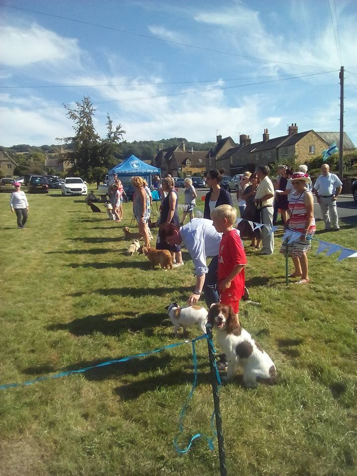 Dog Show at the Willersey Show