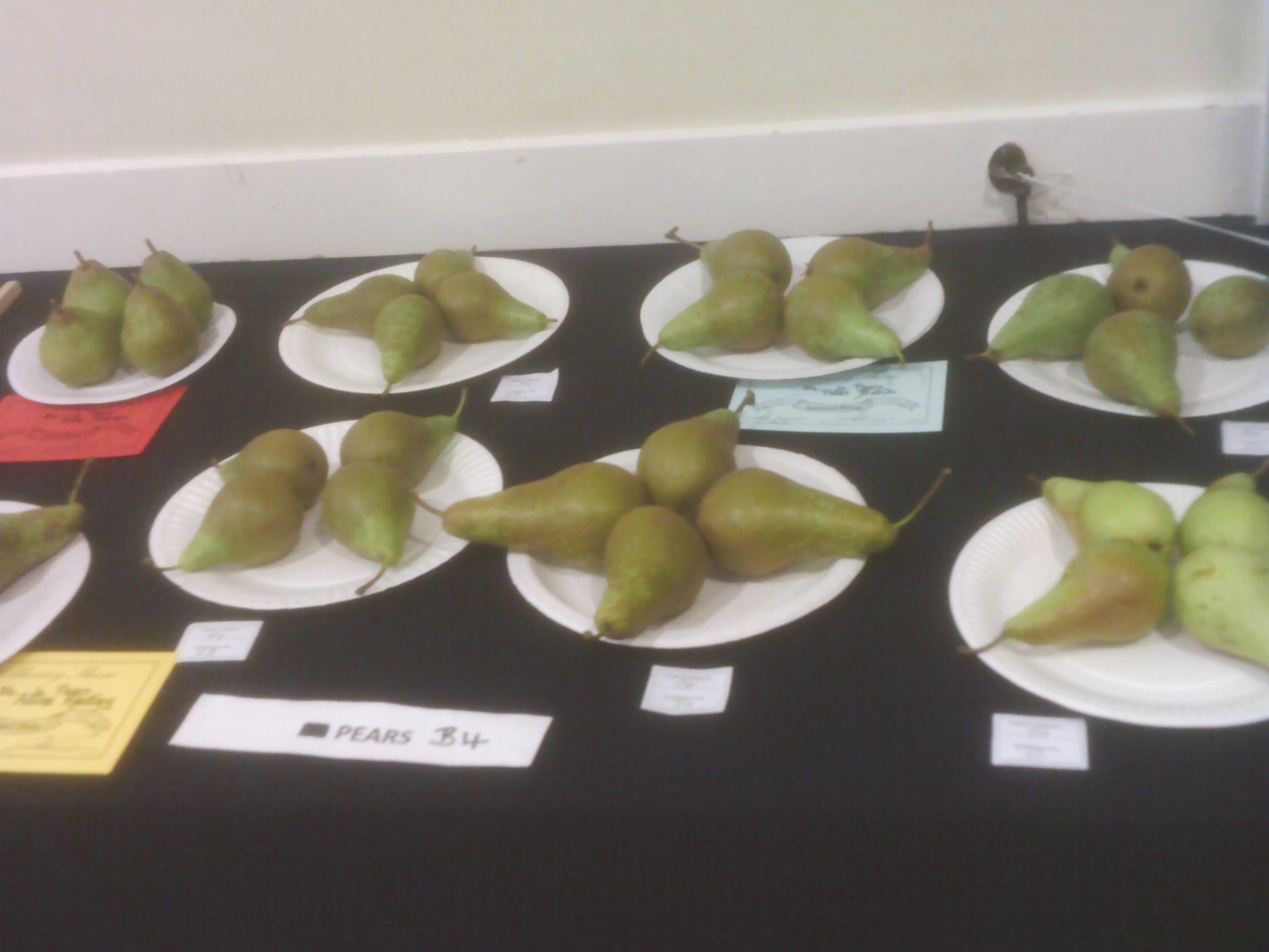 Pears Willersey Horticultural Show