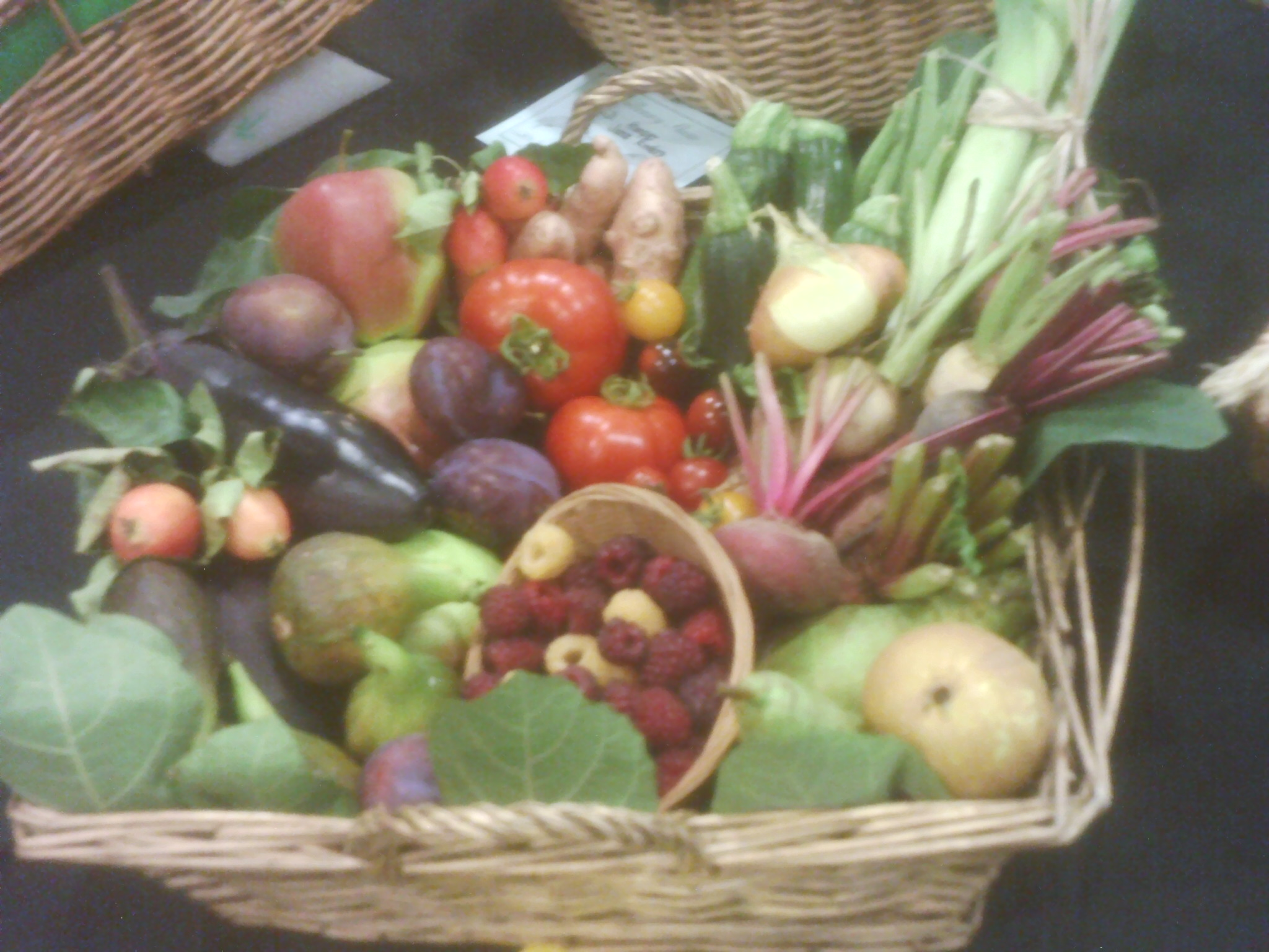 Basket third  at Willersey Horticultural Show